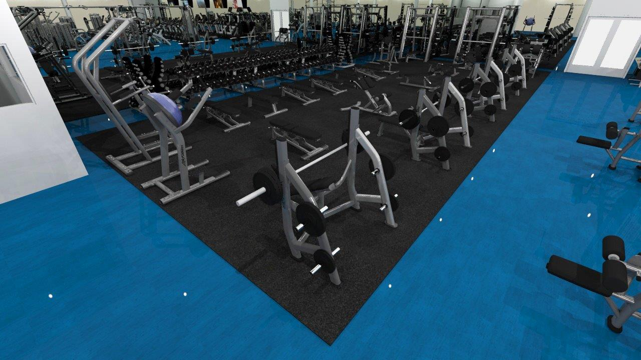 Free Weights | Sports Super Centre | New Gym